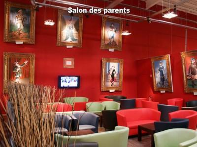 Salon intérieur aménagement Acrochats