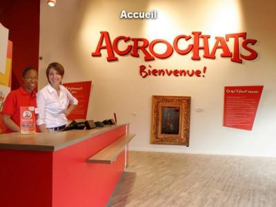 Accueil Acrochats