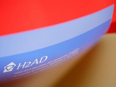 Identité de marque H2AD